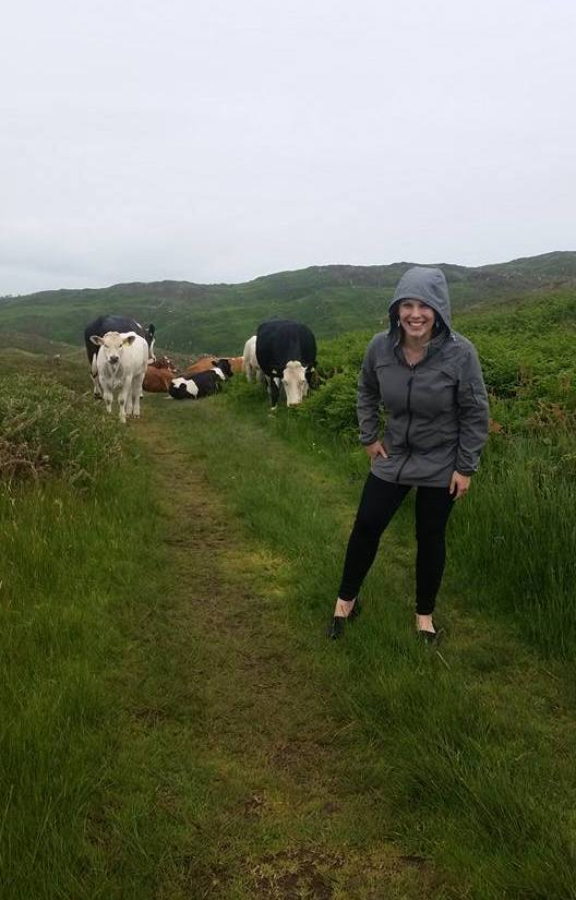 cae-and-cows